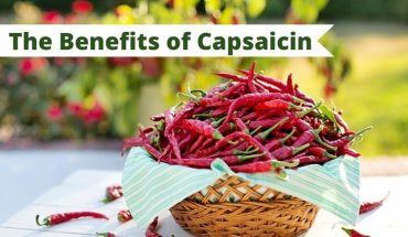 capsaicin cover photo