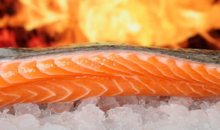salmon on ice with fire